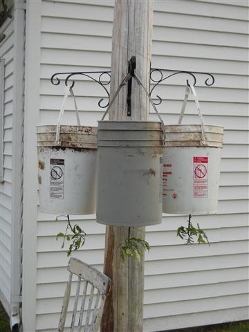 Hanging Tomato Planter | Homemade Upside Down Tomato Planter