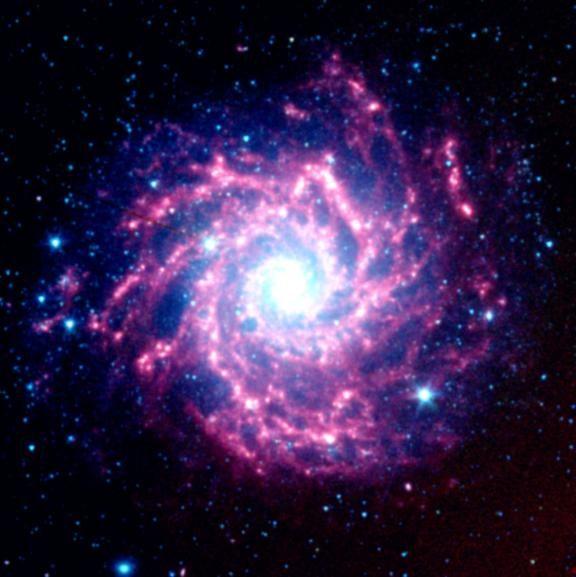 Real Supernova | Supernova Dust Factory in M74, Image Credit: NASA/JPL-Caltech/STScI.