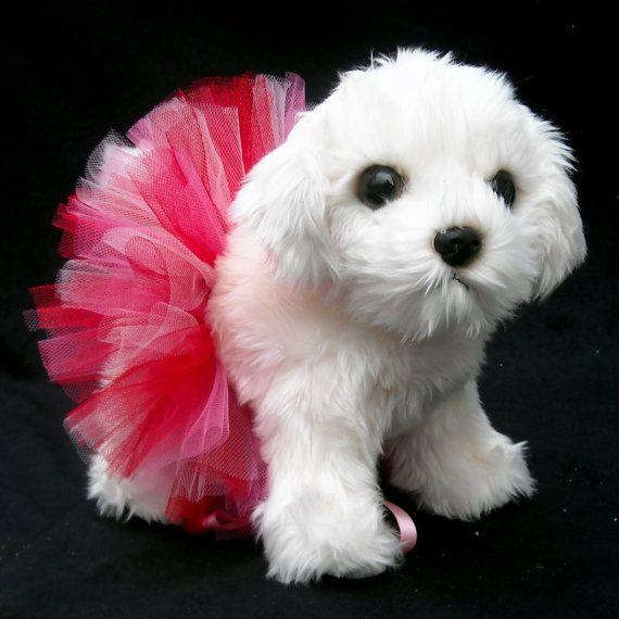 Valentine Dog Tutu