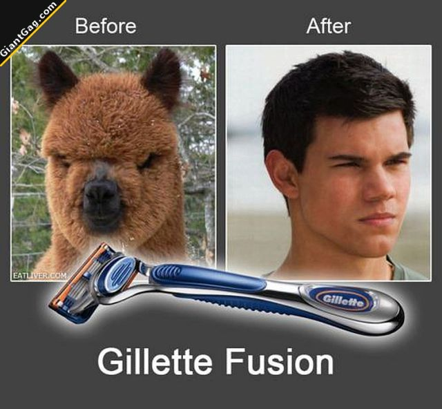 Funny images of the week, 90 pics. Taylor Lautner Before And After Using Gillette Fusion