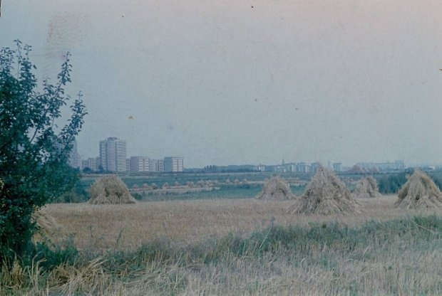 1971 r. W tle widać wysokie bloki, które już wtedy stały przy ul. Kazimierza Wielkiego/Glinianej Zdjęcie wykonane z okolic E.Leclerc???