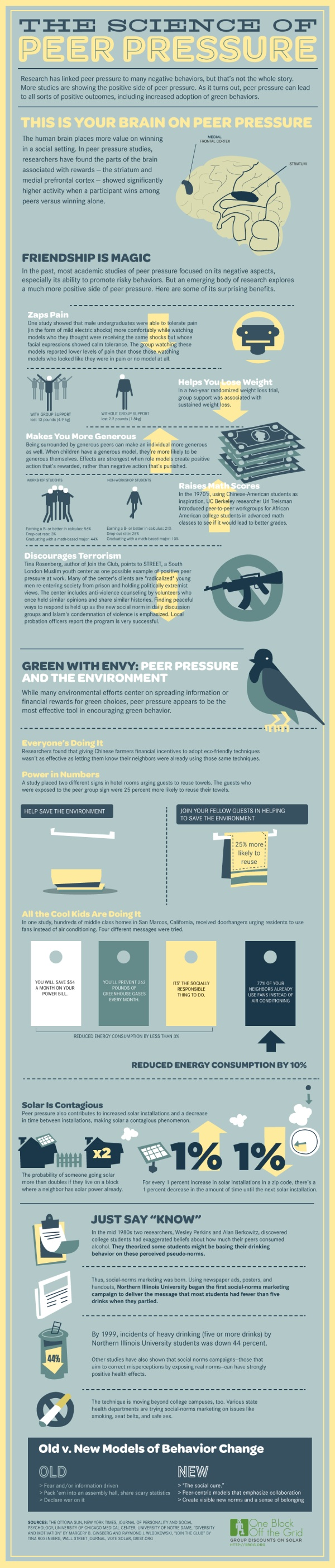 Science Of Peer Pressure & Its Effects On The Brain Infographic Infographic