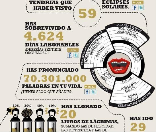 infografico-cervejas.JPG (548×466)