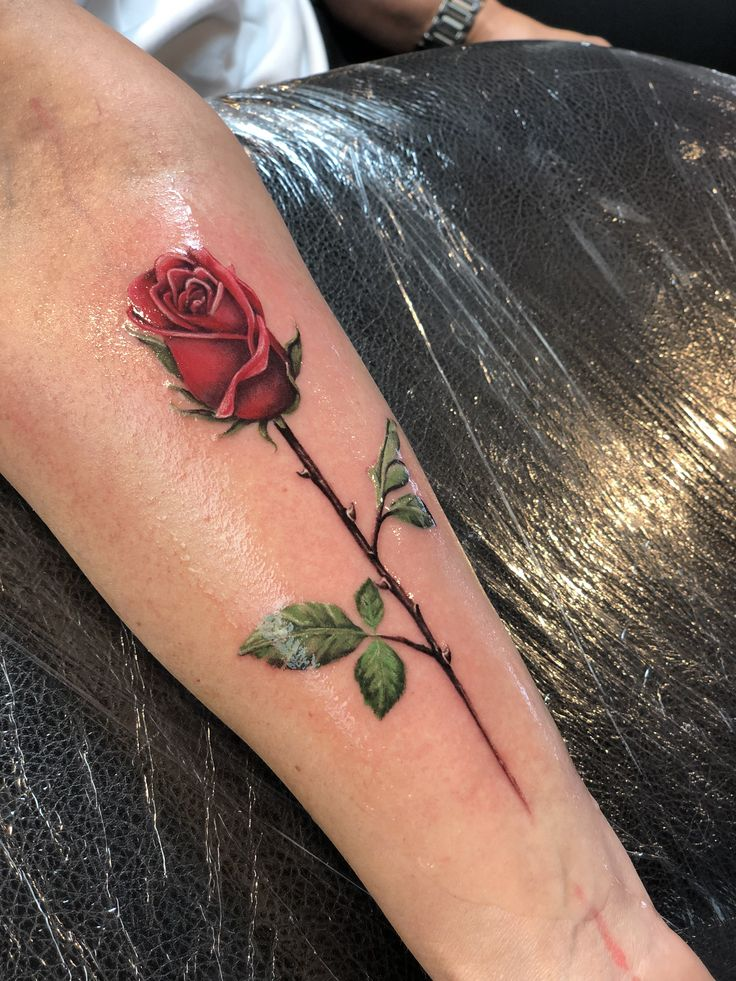 Farben Tattoo