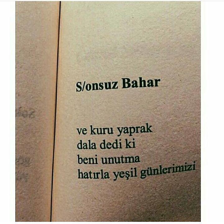 S/onsuz Bahar  Ve kuru yaprak dala dedi ki; beni unutma hatırla yeşil günlerimizi.   -Ahmet F. Yavuz
