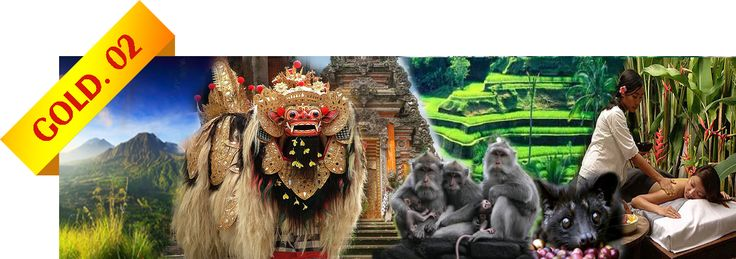 Bali Tour - Gold 2 - Package US$70