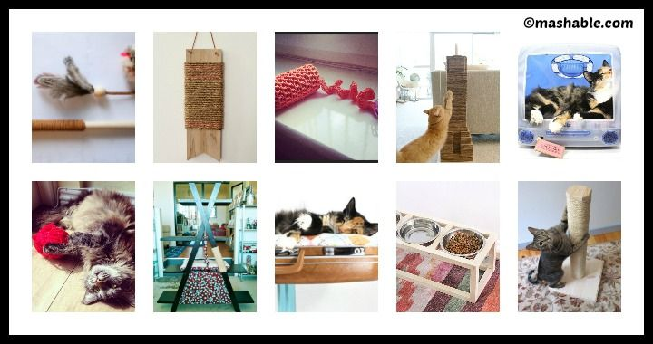 10 DIY Ideas for Cat Owners