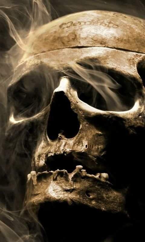 Explore And Share Scary Skull Wallpaper On WallpaperSafari