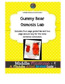 gummy bear lab report Scribd is the world's largest social reading and publishing site.