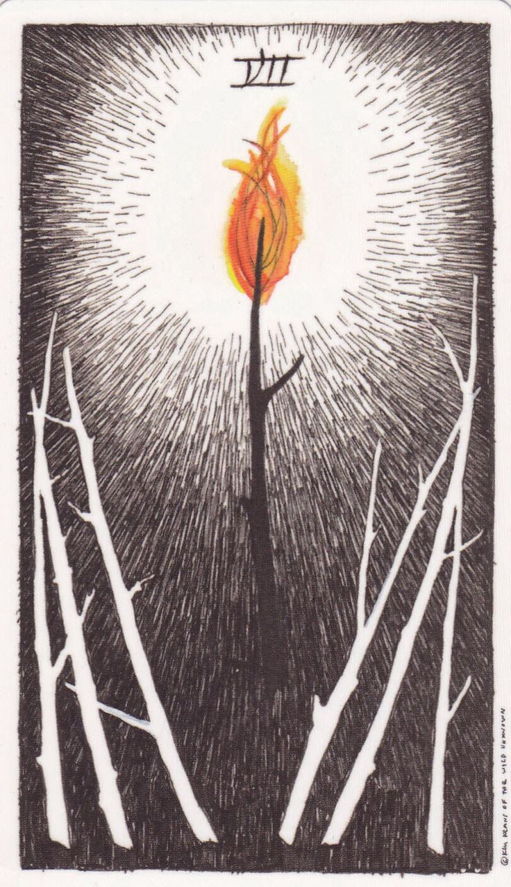 Seven of Wands - Tarot of the Wild Unknown