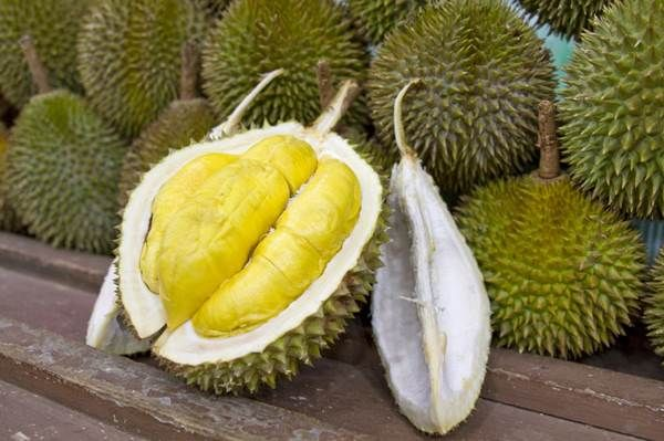 Durian Fruit Benefits for your Health - Benefits of consuming Durian Fruit