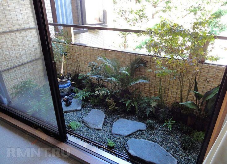 Зимний сад на балконе или озеленение балкона своими руками