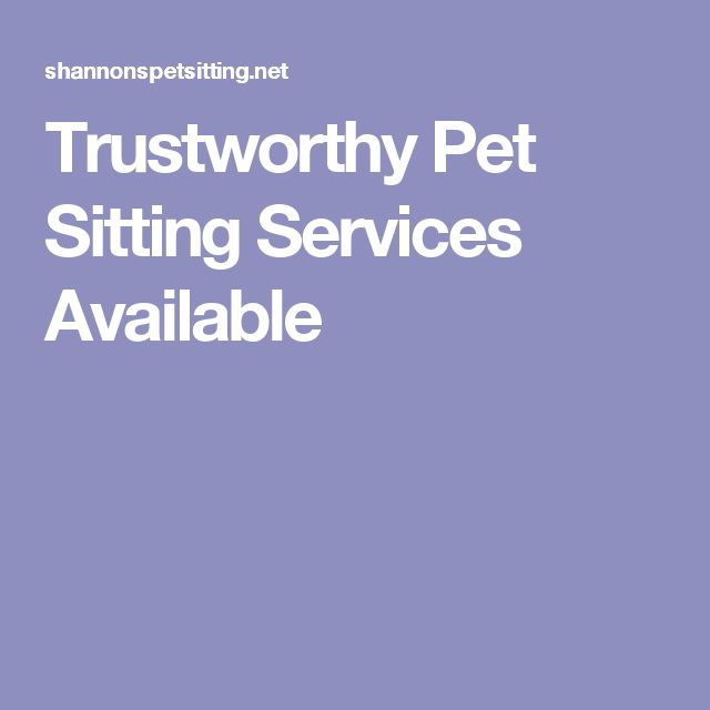 Trustworthy Pet Sitting Services Available