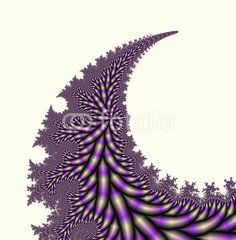 Violet leaf on white background