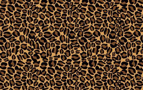cheetah background