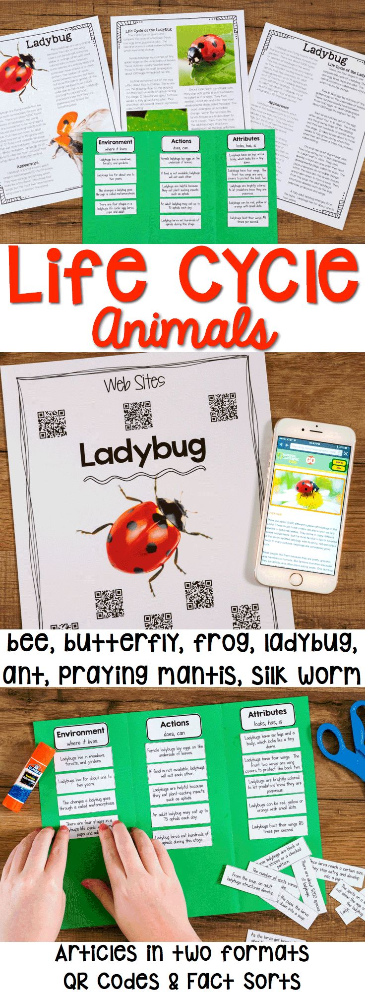 Life Cycle Articles, QR Codes and Fact sort help students dive into information about animals that go through metamorphosis. Includes resources for ants, bees, butterflies, frogs, ladybugs, praying mantis, and silk worms.