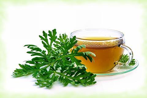 Infos und Tipps zur Wermut Wirkung und Wermut Anwendung: Wermut ist eine Heilpflanze, die durch ihren Wirkungsbereich unterschiedliche Anwendungen ermöglicht, die ...