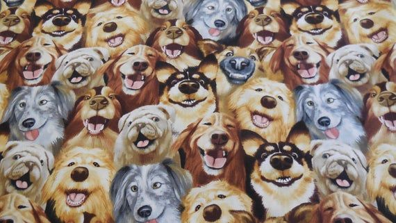 1 Yard Of Selfie Dogs By Timeless Treasures Cute Dog Pictures