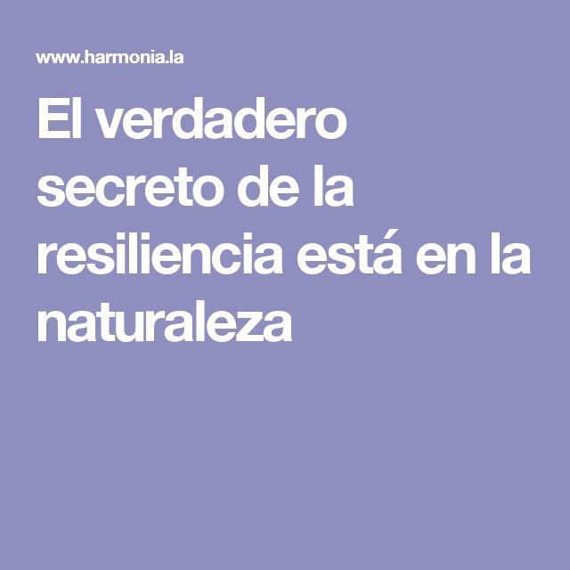 El verdadero secreto de la resiliencia está en la naturaleza