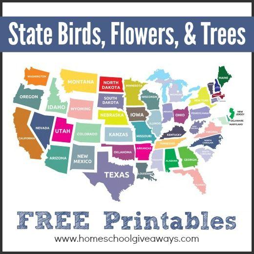 state birds printable, state trees printable, and state flowers printable