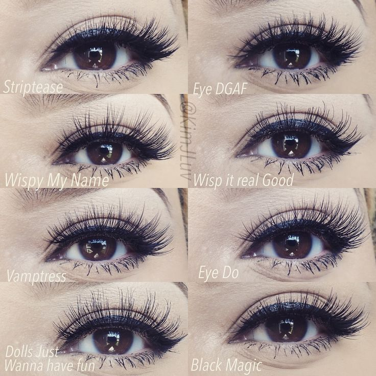 Image Result For Types Of Fake Eyelashes Styles On Eyes Make Up