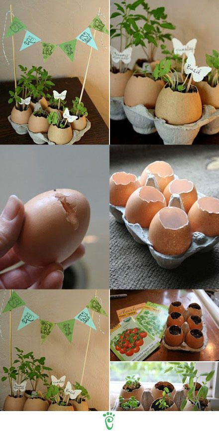 Clever idea! Thinking these would be great center pieces for Easter Tables & you could send them home with the moms and grandmoms!