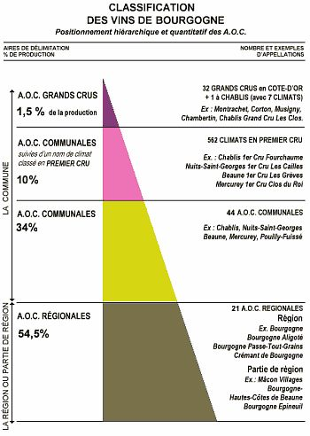 Classification des vins de Bourgogne
