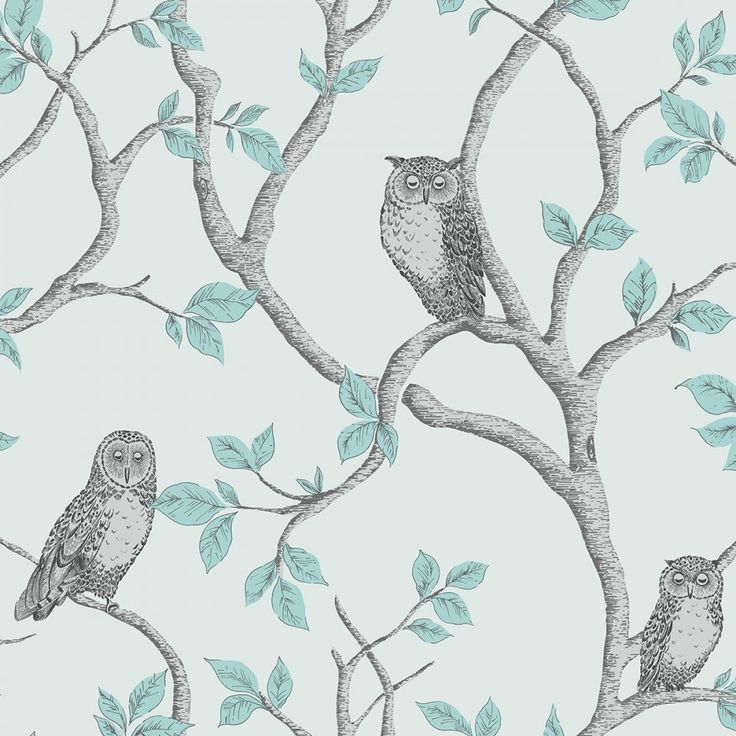 Fine Decor Woodland Owls Wallpaper Teal / Grey (FD40638)