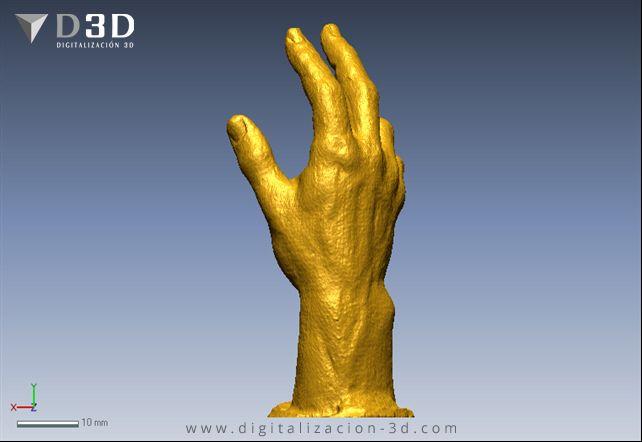Vista trasera de la mano escaneada