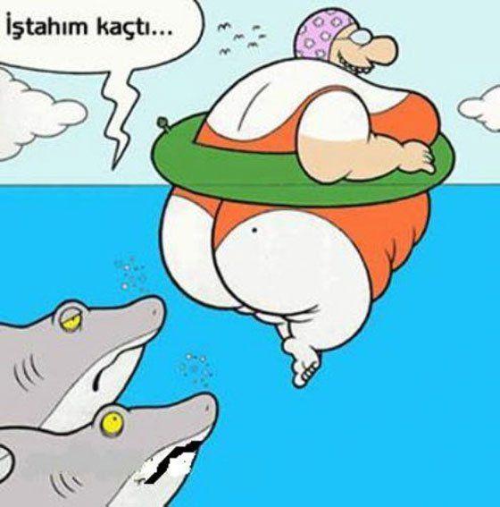Iştahı kaçan kopek balıkları #istahimkacti #karikatur #karikatür…