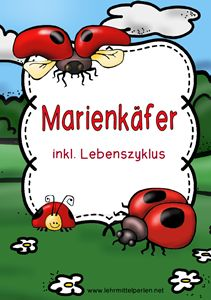 Marienkäfer                                                                                                                                                                                 Mehr
