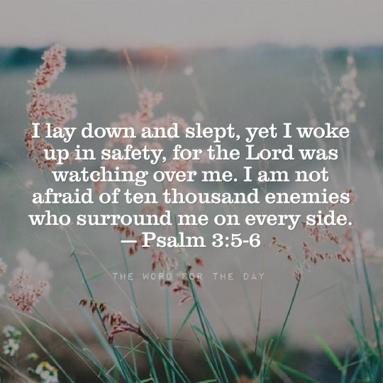 The Word For The Day Quotes, bible verse, bible quotes, psalms, fear, terror, sleep quotes