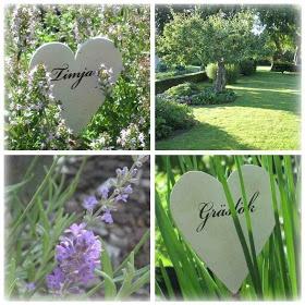 betong ute och inne: min trädgård