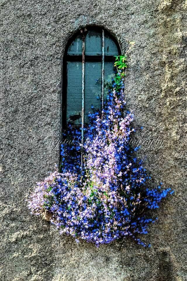 het verborgene, zelfs door het uitbundige blauw en wit