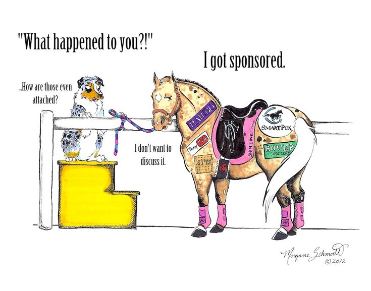 Horse Nation's illustrious illustrator Morgane Schmidt is back this week with a a new edition of her hilarious comic.