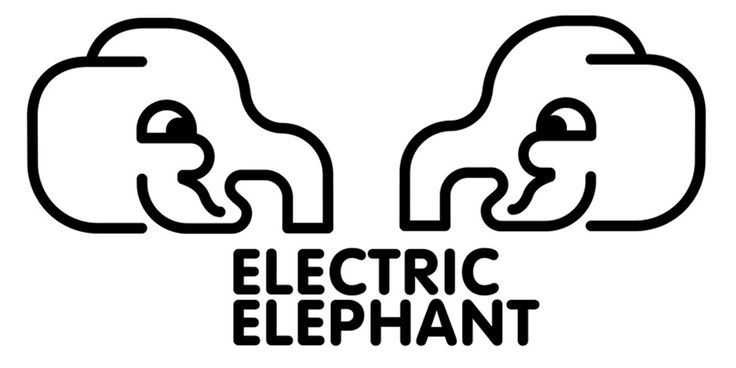 FESTIVAL 101: ELECTRIC ELEPHANT