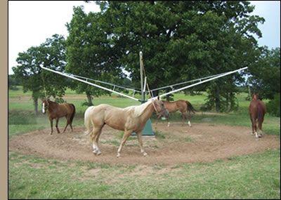 Image result for hot walker for horses