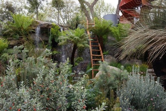 Waterfall and Billabong Australian Native Planting  in Trailfinders Garden presented by Flemings Nurseries Chelsea Flower Show 2013 image Images are courtesy of Adam Woodruff.  All rights are reserved www.studiogblog.com