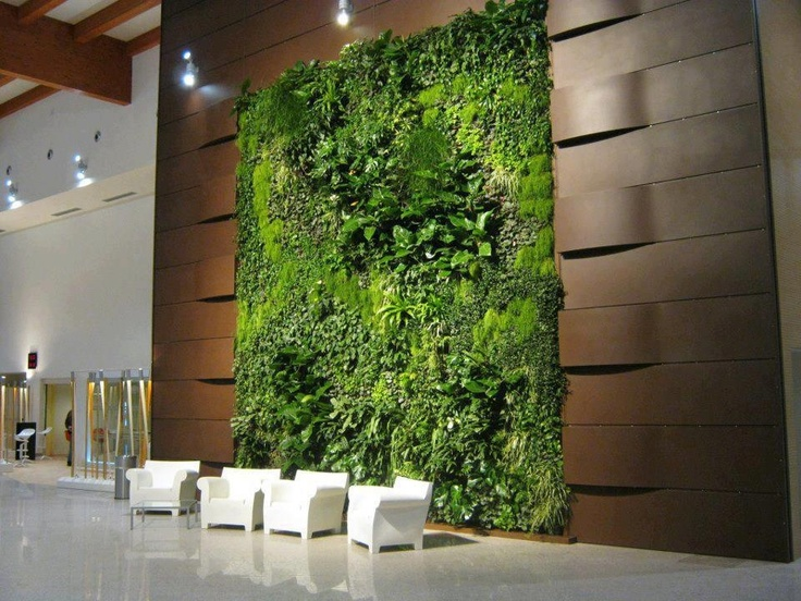 live plant and moss wall interior gardens austin