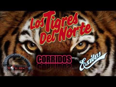 Los Tigres Del Norte Mix 2018 - Corridos Perrones - YouTube