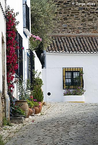 Terena, Alentejo  Portugal