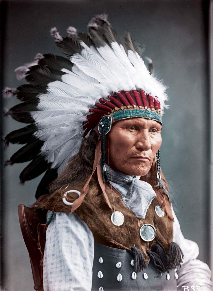 Луи Сидящий Бык, сын Сидящего Быка, хункпапа-лакота.