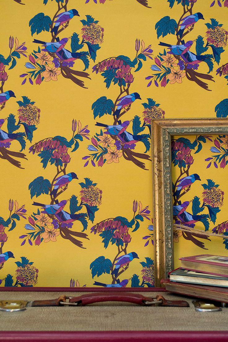 98 best Bird Wallpaper images on Pinterest | Bird wallpaper ...