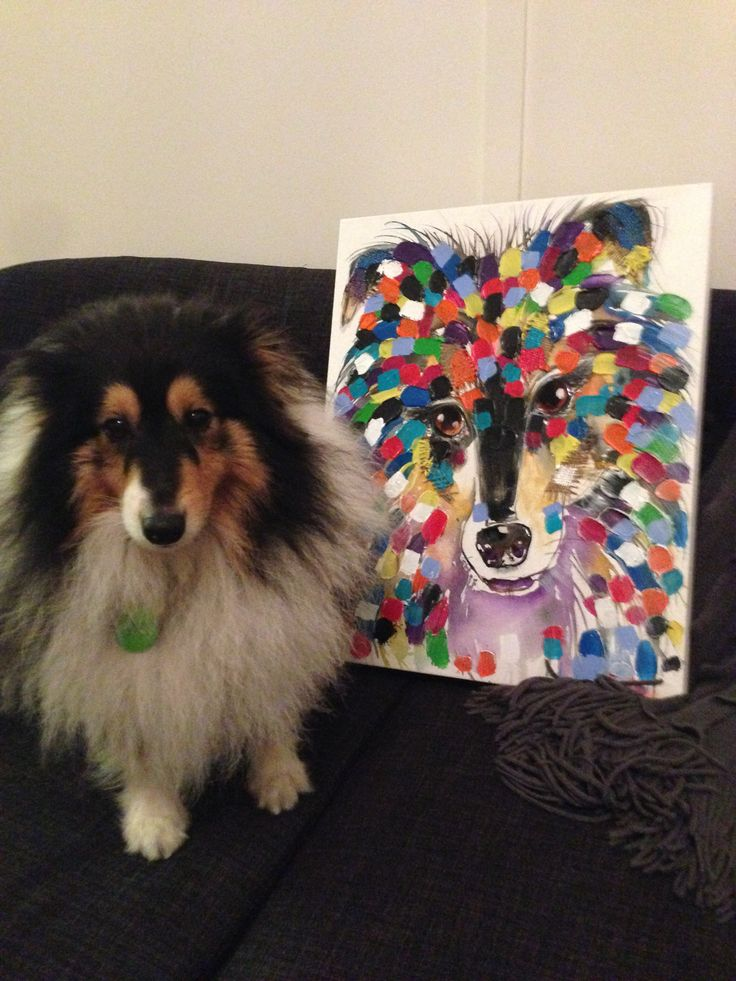 Flynn the sheltie and his Tracey Keller portrait