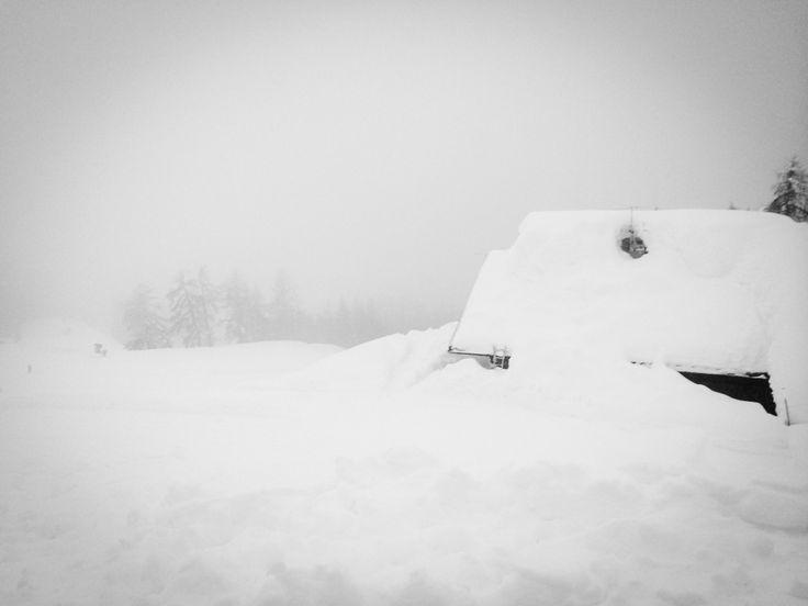 Malga Ciocca, Pinzolo, Trentino TN, Tulot Audi Quattro