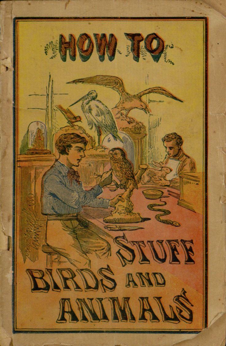 How To Stuff Birds And Animals, Pamphlet, 1900, Vintage Instructional  Booklet, Vintage · Free Ebooksbook
