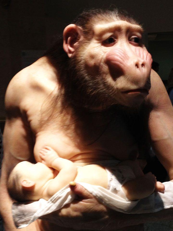 Amamentando o bebê (Foto: Matheus Pinheiro de Oliveira e Silva)