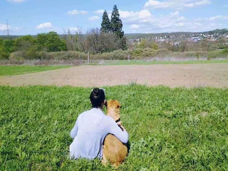 #dog #cute #love