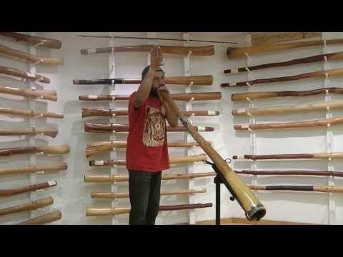 How To Imitate Animal Sounds On The Didgeridoo - YouTube