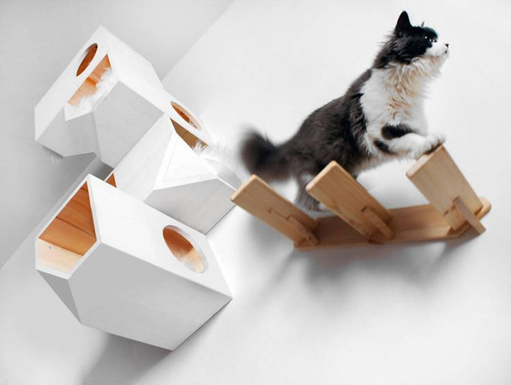 Geometrical Wooden Cat Tree – Fubiz Media